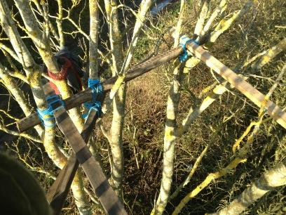View from a treehouse under construction at Adam's farm in Crowhurst (20/12/12)