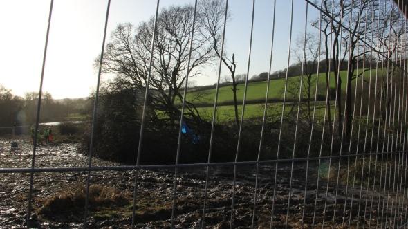 Trees felled after Decoy Pond eviction. 30-01-2013. Photo: Marta Lefler