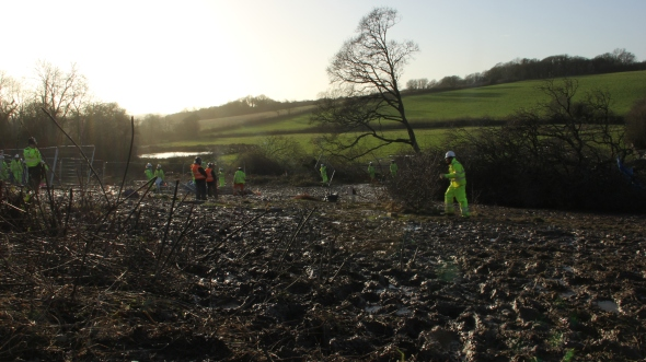 Trees felled after Decoy Pond eviction. 30-01-2013. Photo: Marta Lefler