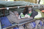 Not arrested: two women locked-on inside a barricade at Base Camp on 16 January 2013