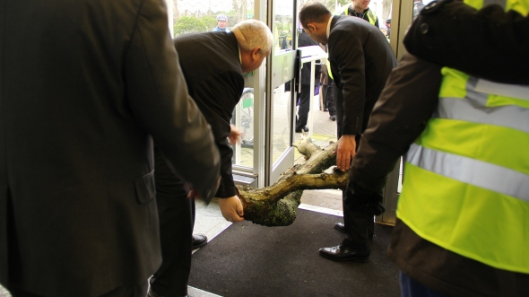 Security guards remove the tree from Lewes County Hall. Photo: Marta Lefler.