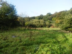 Hollington Valley, Oct 2014
